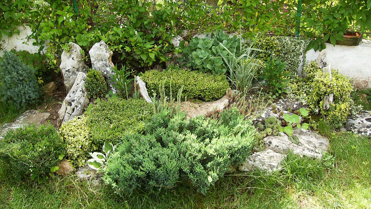 Камъни в двора