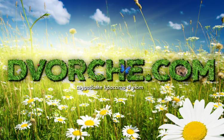 Dvorche.com - пролет