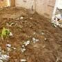 Частен двор - Бистрица гардънс - засаждане на декоративна растителност (преди)