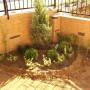 Частен двор - Бистрица гардънс - засаждане на декоративна растителност (сега)