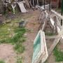 Озеленяване на частен двор в с. Пожарево - какво заварихме