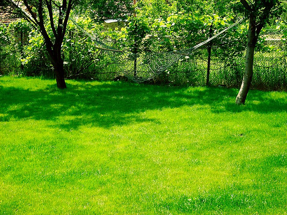 Тревен килим